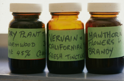 Schambergs Disease Herbal Treatment - McDowell's Herbal Treatments